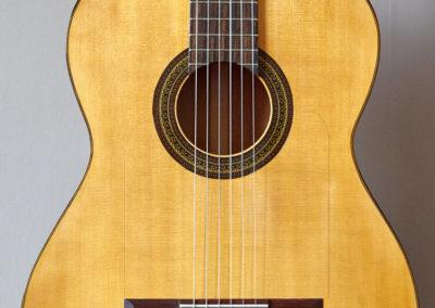 Flamenca1-temp-12