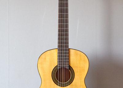 Flamenca1-temp-13